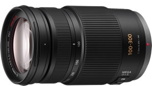 Panasonic LUMIX G VARIO 100-300mm F4.0-5.6 MEGA O.I.S. H-FS100300 Telephoto Zoom Lens