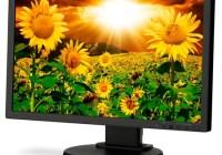 NEC MultiSync E201W Enterprise Desktop LCD Monitor