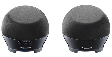 Pioneer S-MM251 Compact Notebook Speakers black