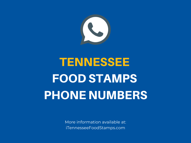 Tennessee Food Stamps Number