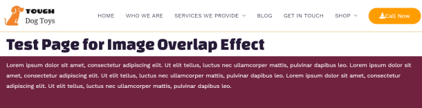 Overlap Effect without the image