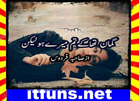 Guman Tha K Tum Mery Ho Lakin Urdu Novel By Sahiba Firdous