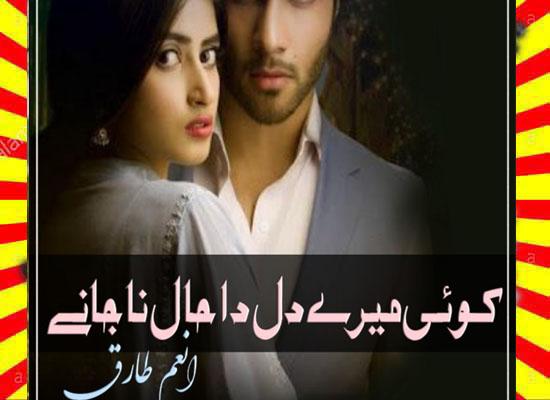 Koi Mere Dil Da Haal Na Janay Urdu Novel By Anam Tariq