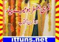 Tumhi Hamsafar Ho Mere Piyar K Urdu Novel By Kiran Aftab