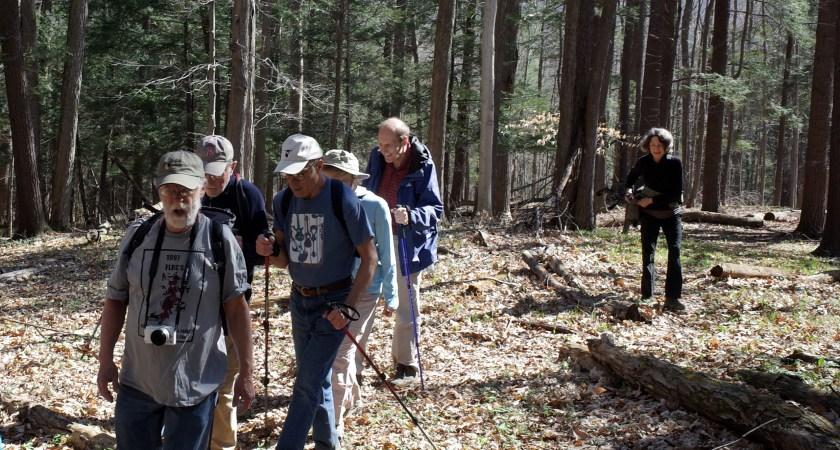 Fischer Old Growth Forest 129