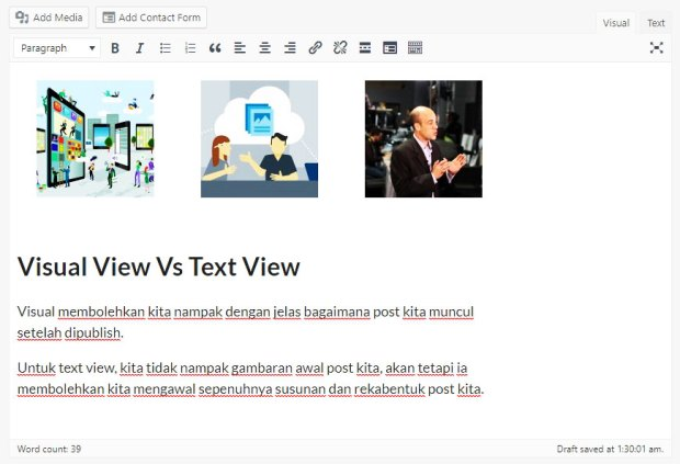 visual view dalam wordpress