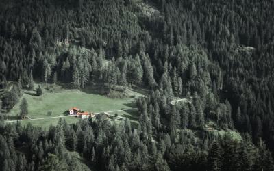 Loi Grenelle II : Une commune ne peut se prévaloir de l'illégalité de son PLU pour refuser une demande d'extension d'une habitation en zone naturelle