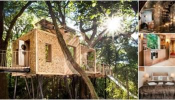 Tom S Treehouse Brings Tiny House Magic To Camp Wandawega Tiny Houses