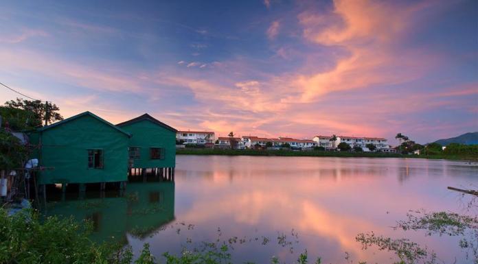 Fish Ponds at Tai Sang Wai 大生圍魚塘