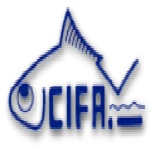 CIFA recruitment
