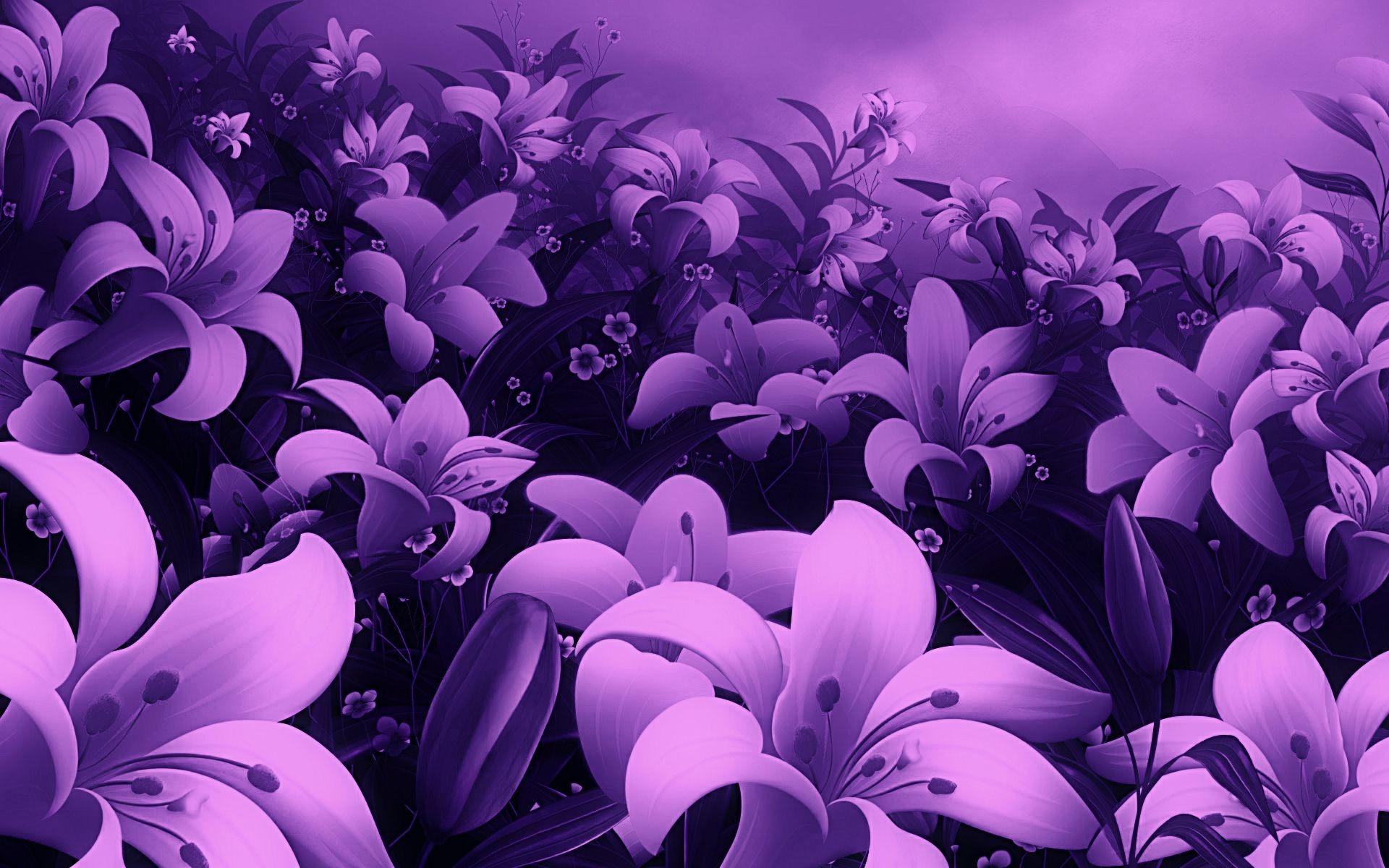 Beautiful Flower Indoor Wallpaper Hd Desktop M Full Screen Flower Wallpaper Hd 664284 Hd Wallpaper Backgrounds Download