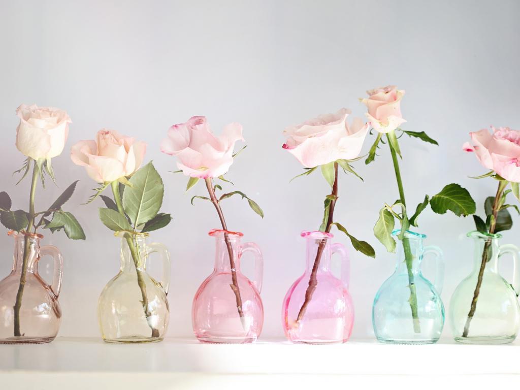 Roses Floral Desktop Wallpaper Hd 869759 Hd Wallpaper Backgrounds Download