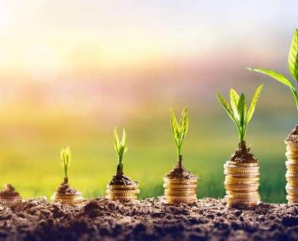 Wirtschaftlichkeitsbewertung von IT-Lösungen