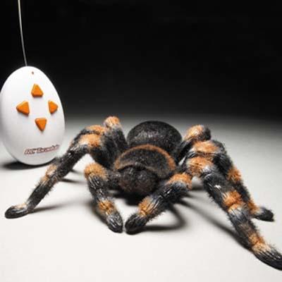 Remote Control Tarantula