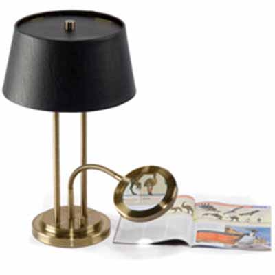 Desk Lamp With Lighted Magnifier