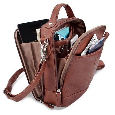 The Sightseer's Argentinian Leather Carryall 1