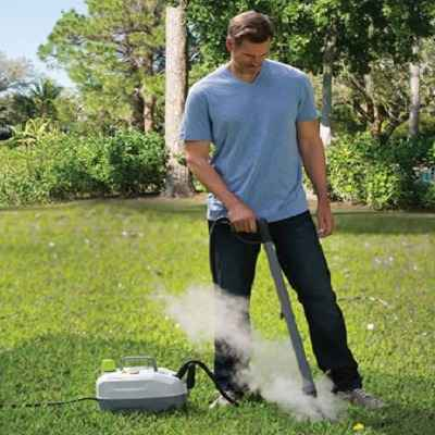 The Weed Killing Steamer