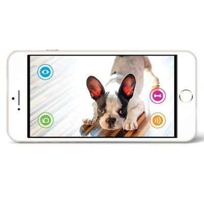 The WiFi Communicating Pet Treat Dispenser 1