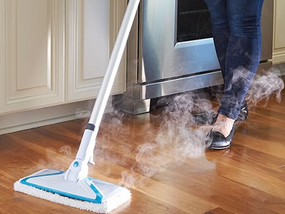 The Best Steam Mop 1