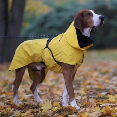 Dog Reflective Raincoat