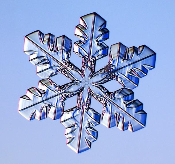 http://www.its.caltech.edu/~atomic/snowcrystals/photos3/w040217a041.jpg