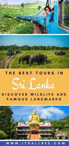 The Best Budget Tours In Sri Lanka | yala national park, nuwara eliya, arugam bay, sigiriya and cheap tour packages from sri lanka