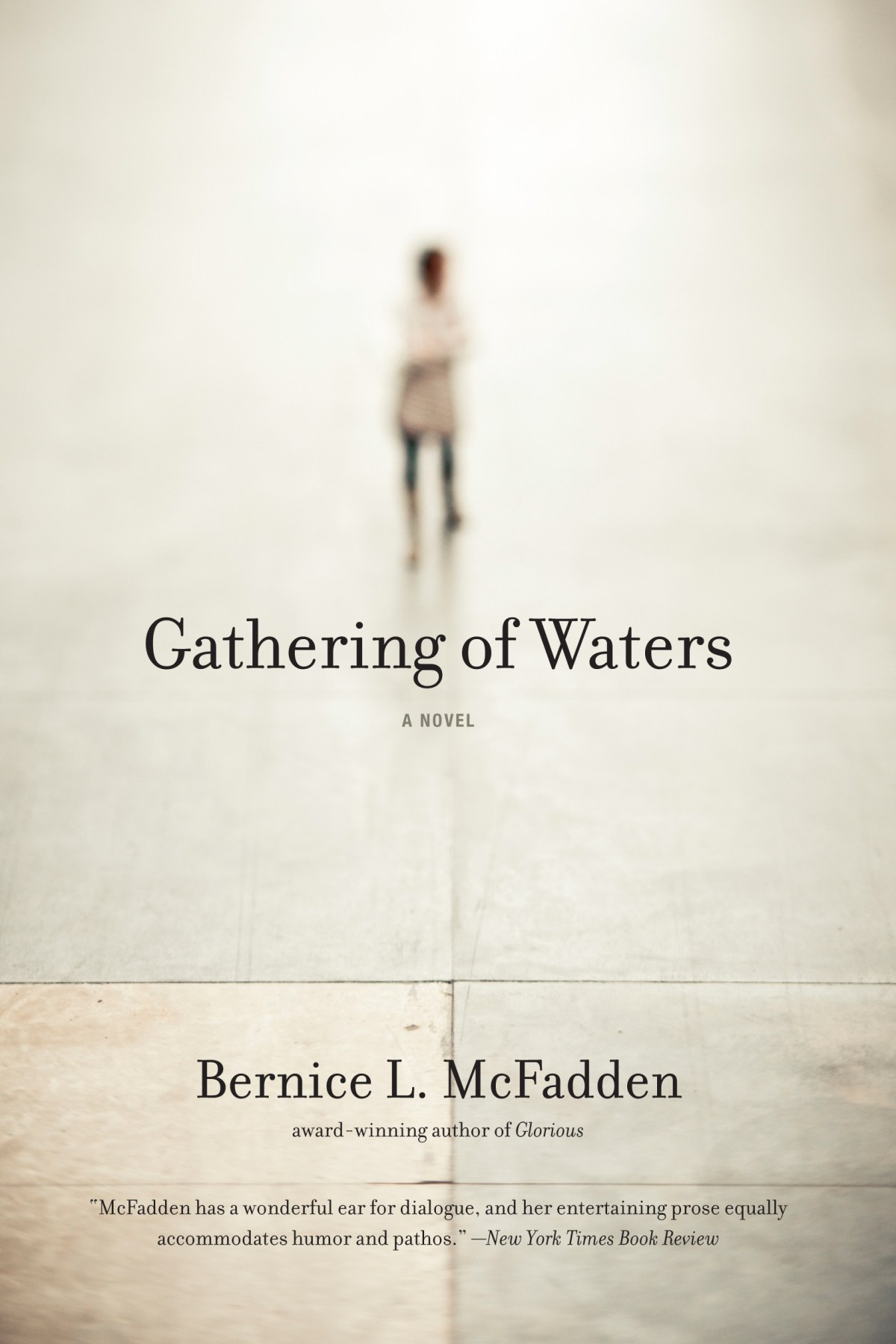 Gathering of Waters by Bernice L McFadden Interview
