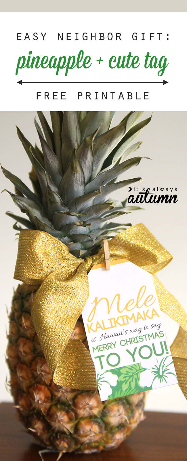 Easy Neighbor Gift Idea Pineapple Cute Tag Its