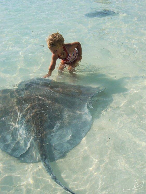 Travel Makes Kids More Adventurous