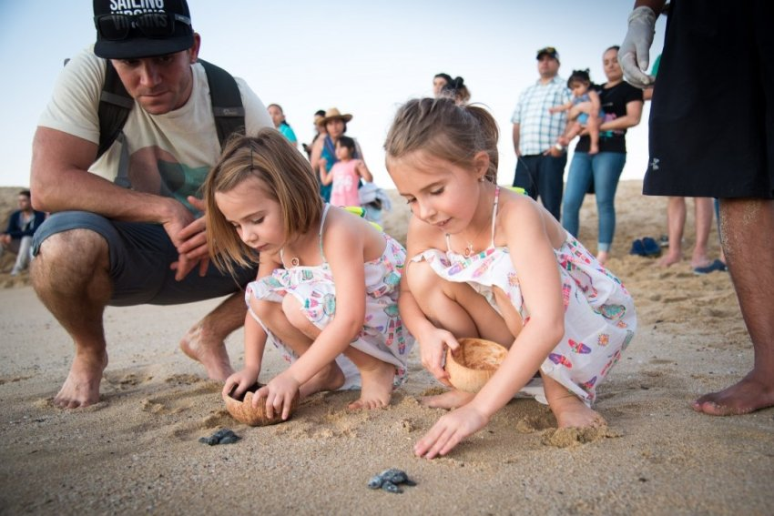 girls releasing turtles in TS