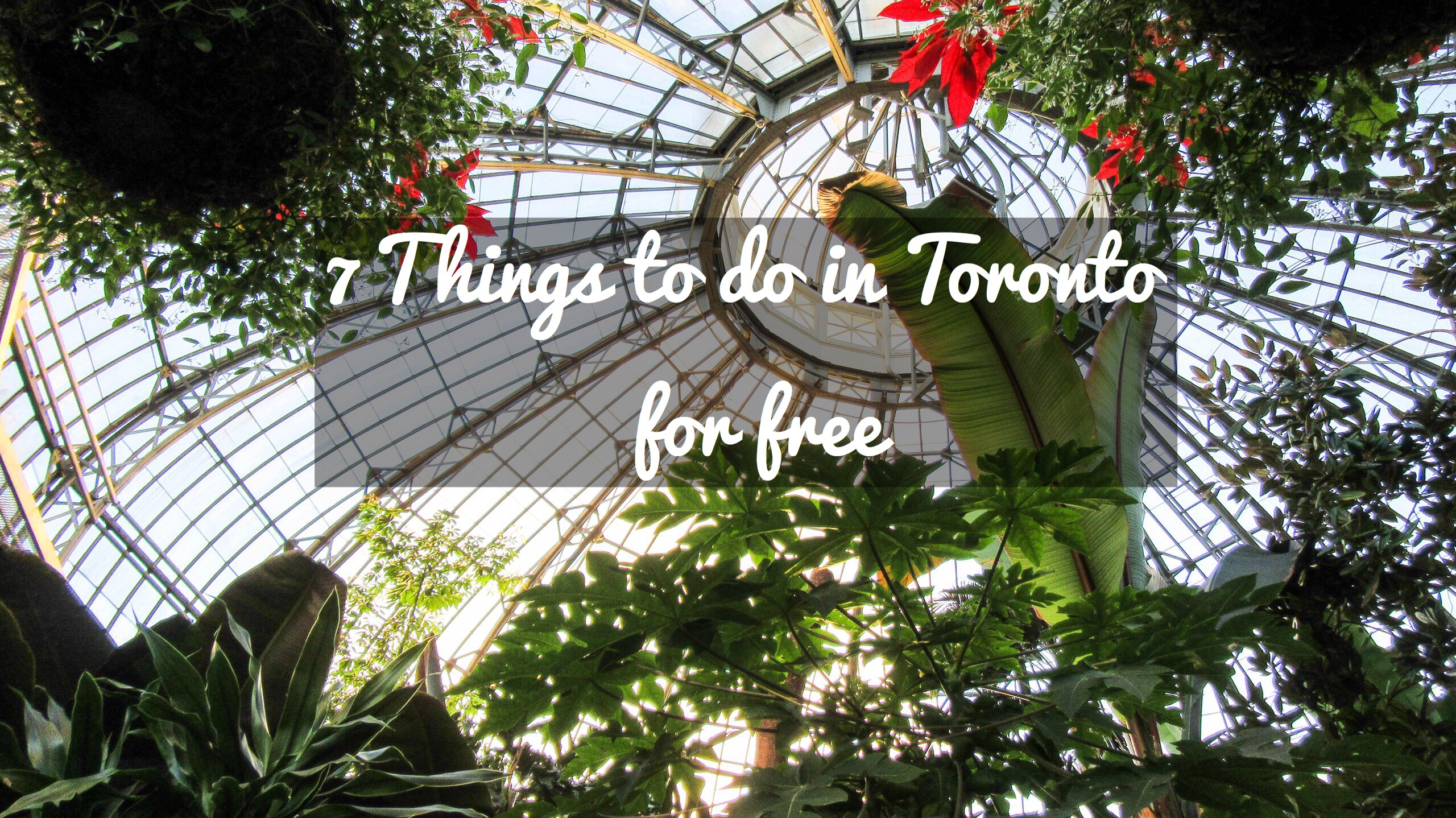 7 Things to do in Toronto for free