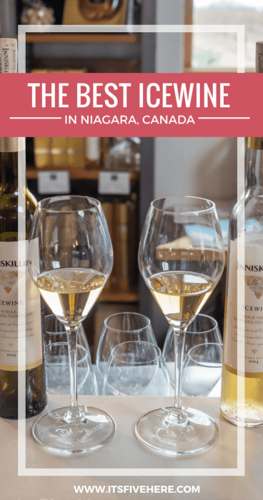 The Niagara region in Ontario, Canada is world-renowned for its premier icewine. Here are the top Niagara wineries you need to put on your itinerary!