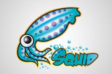 Squid 5 Proxy Server Stable Release