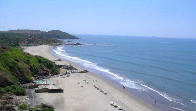 Photo of CHAPORA BEACH