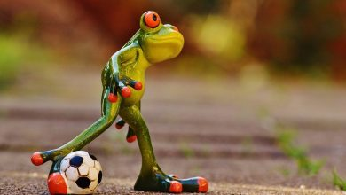 Photo of Can Football contribute to Tourism in Goa?