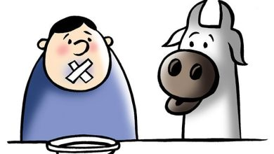 VHP to ban beef in Goa