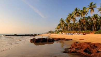 Photo of Psychology can now help choose the 5 best beaches in Goa for your personality