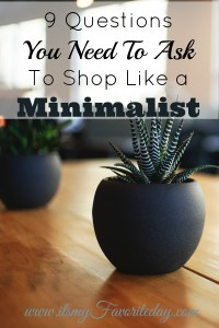 I so NEEDED this. If you are trying to simplify, down size or minimize you MUST read this. Great list of shopping questions to ask before making purchases. Will be applying these on my next shopping trip. Repin for future reference. Check it out now!