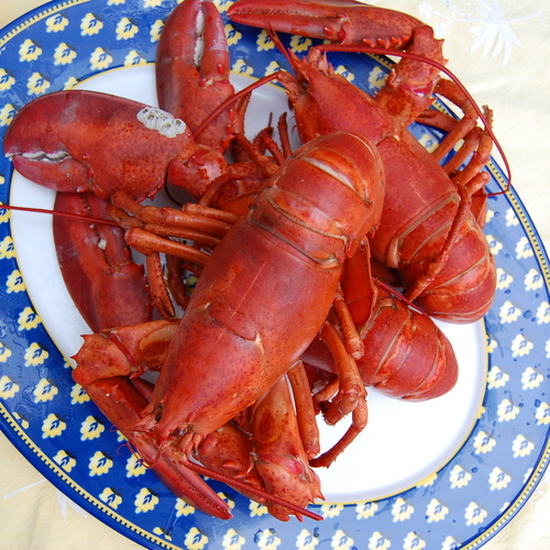 Happy Birthday - Old Bay Steamed Lobster Revisit