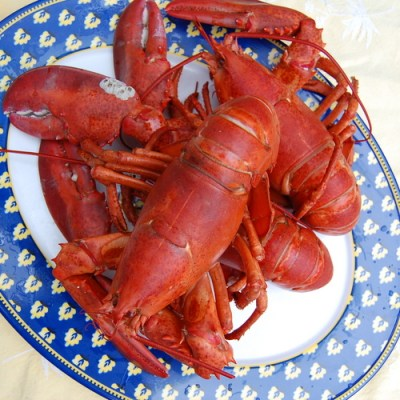 Old Bay Steamed Lobster - It's Not Easy Eating Green