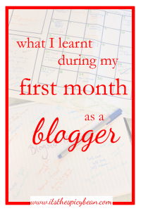 first month as a blogger
