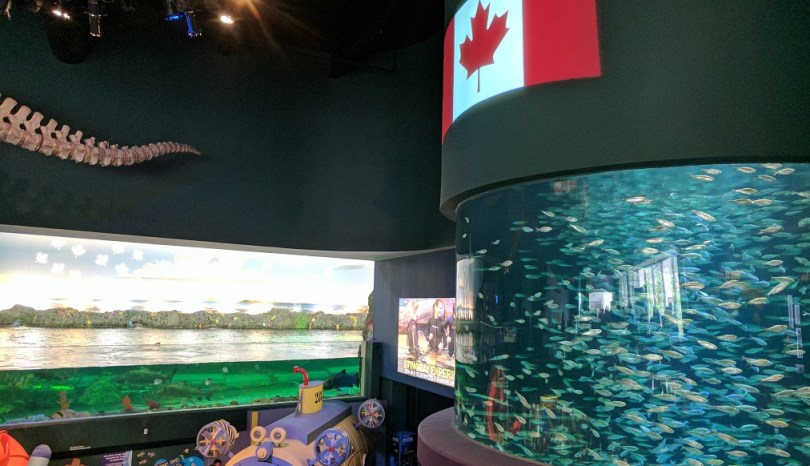 Ripley's aquarium of Canada – when can I move in?