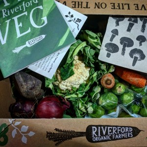the spicy bean - veganuary: the most surprising challenges - www.itsthespicybean.com