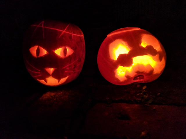 the spicy bean - two pumpkins sit next to each other in the dark. One has a cat face carved in it, the other a scary sad face. Both are lit up with tea lights