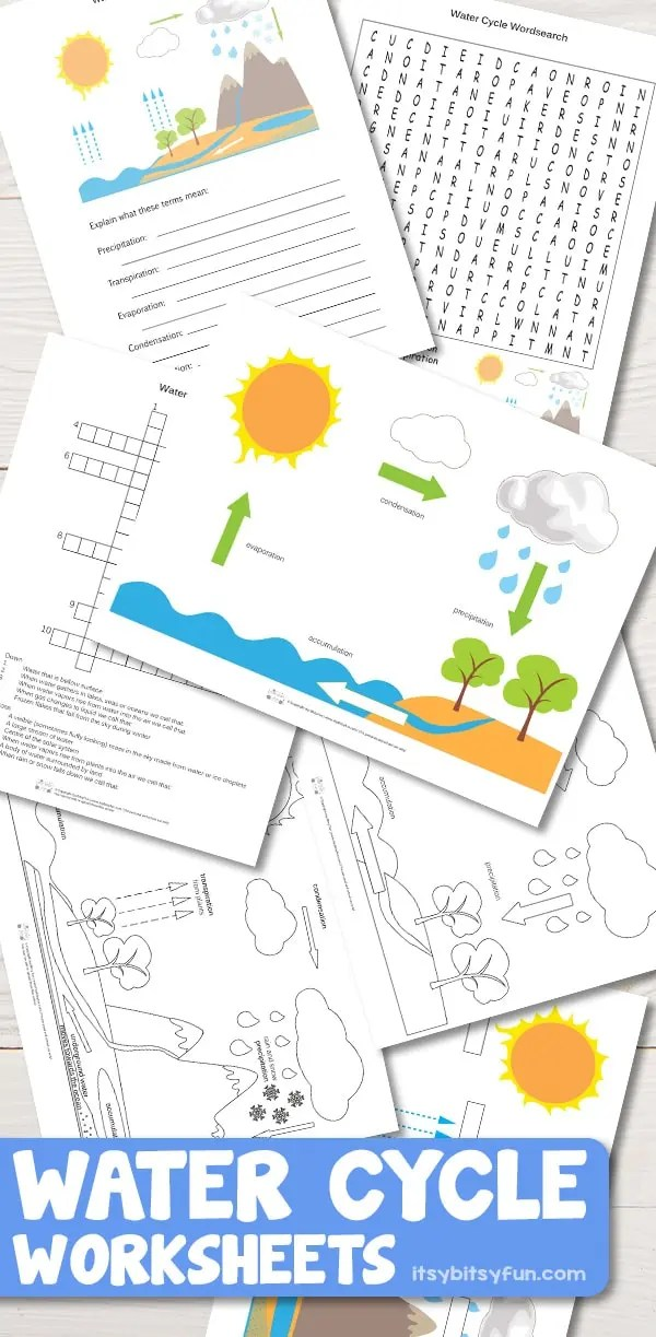 Free Printable Water Cycle Worksheets Diagrams Itsybitsyfun Com