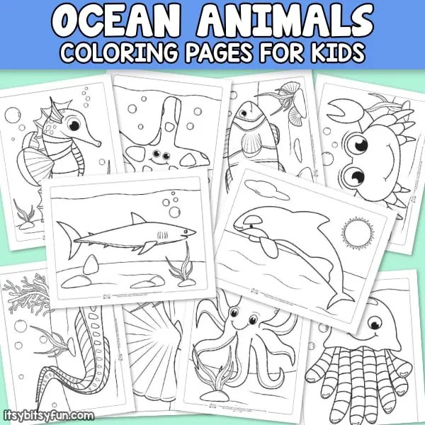 Ocean Animals Coloring Pages For Kids Itsybitsyfun Com