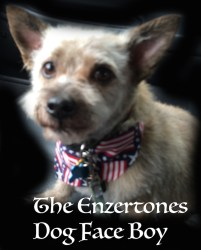 Enzertones Dog Face Boy