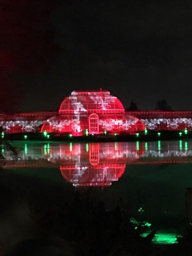 Kew at Christmas
