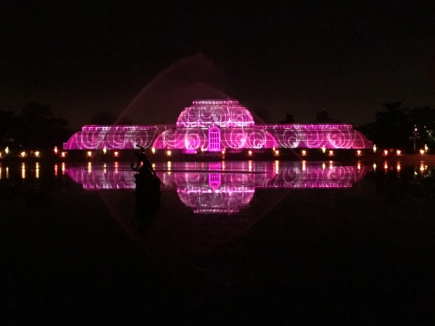 Kew at Christmas