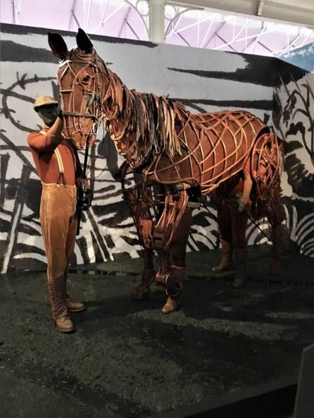 Joey War Horse